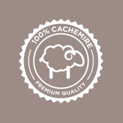 icona cachemir